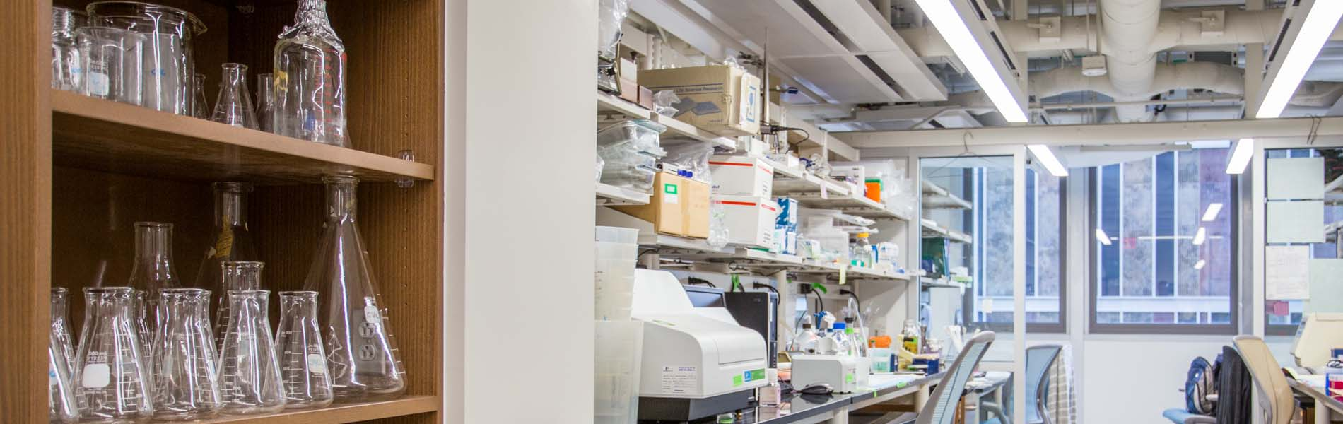 Snapshot of Research Laboratory without people